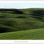 Green hills near san Quirico -2012 size 120x30