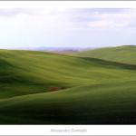 Green hills near Radi-2011-size cm.120x40