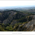 Monte oliveto abbey from Chiusure 2011 size 120x40cm