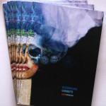 Visionary broshure