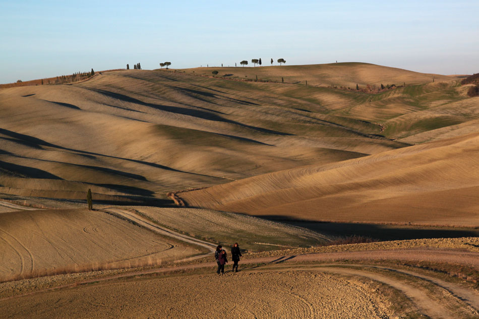 Colline in Val d'orcia