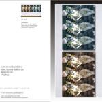 Revelations series -COD: BDARI07