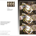 Revelations series -COD: BDARI06