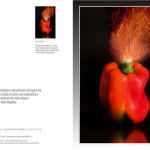 Visionary series -COD: BDAVI18