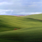 Green hills near Ponte a Tressa