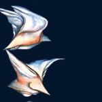 Bird 2 - 2007 graphic elaboration