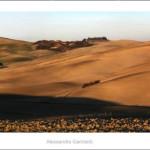 Yellow dunes 2012-120x30cm.