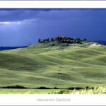 Landscape near Monteroni d'Arbia 2013 size 120x30cm