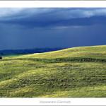 Landscape near Monteroni d'Arbia 2013 size 120x40cm