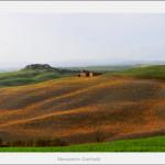 Landscape near Monteroni d'arbia 2011 size 120x40cm.