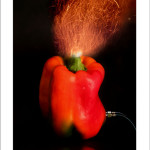 Cod. VI01 Electric pepper cm.50x70h