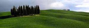 cipressiasanquiricomaggio2012