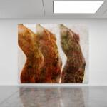 Il bosco dei segreti- contemporary art gallery
