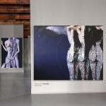 Nell'anima e la cura- contemporary art gallery