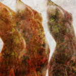 Naked in the woods-2020-digital photo elaboration