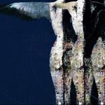 Souls- graphic elaboration 100x120cm
